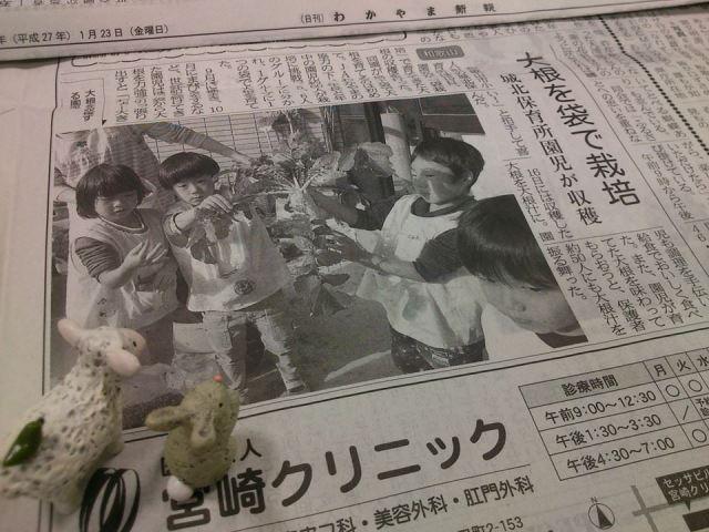 wakayamashimpo20150123